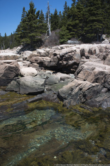 Acadia National Park Shoreline