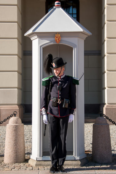 Guard at Det Kongelige Slott (The Royal Palace) by Steven Michael Martin
