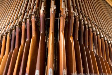 Springfield Armory Rifles